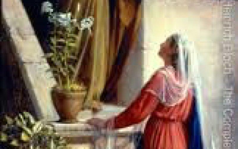 Vissvētākās Jaunavas Marijas apmeklēšanas svētki